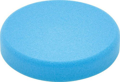 Picture of Polishing sponge PS STF D80x20 BL/5